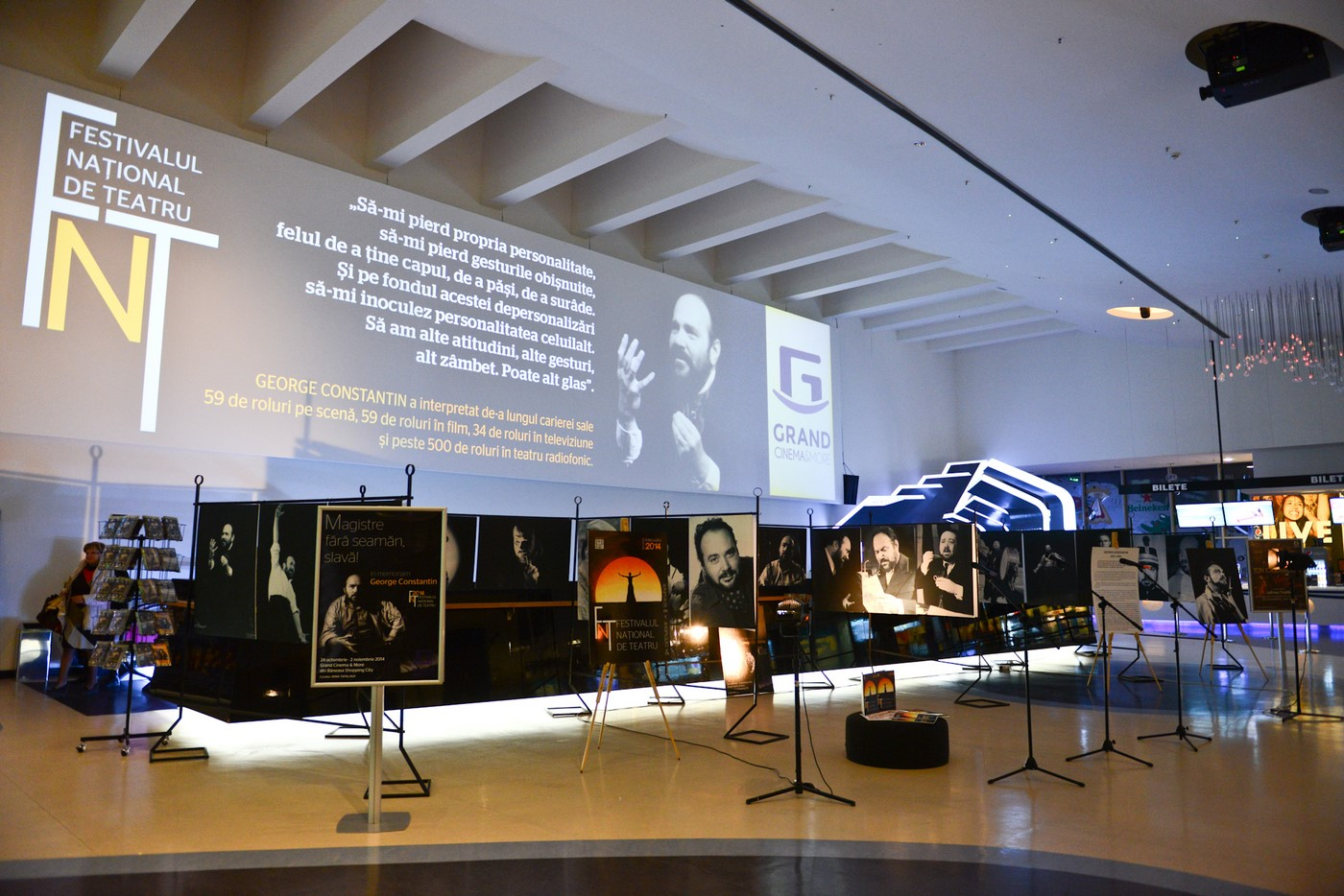 expozitie george constantin