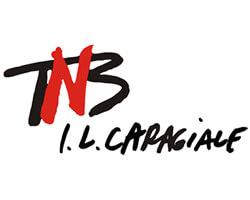 Logo Teatrul Național București